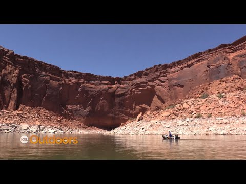Fishing for a Mixed Bag at Lake Powell