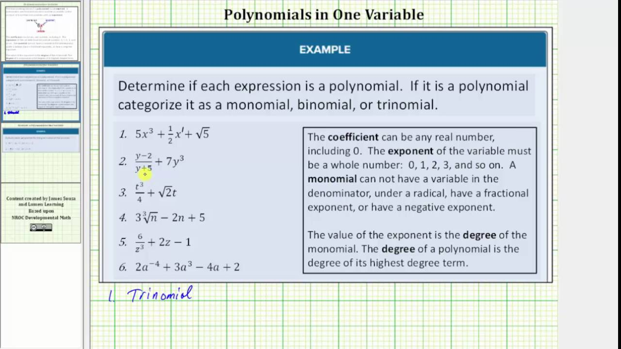 Determine if an Expression is a Polynomial - YouTube