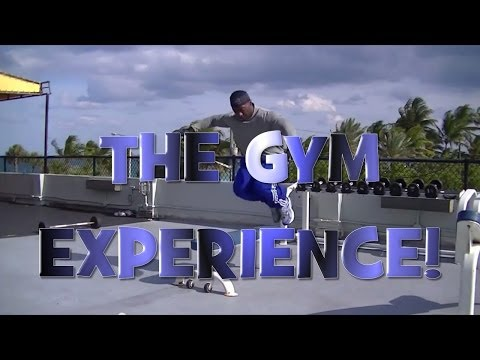 The Gym Experience For Ultimate Fitness!
