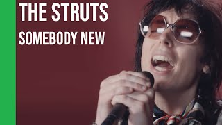 Baixar The Struts - Somebody New (acoustic) | sub Español + lyrics