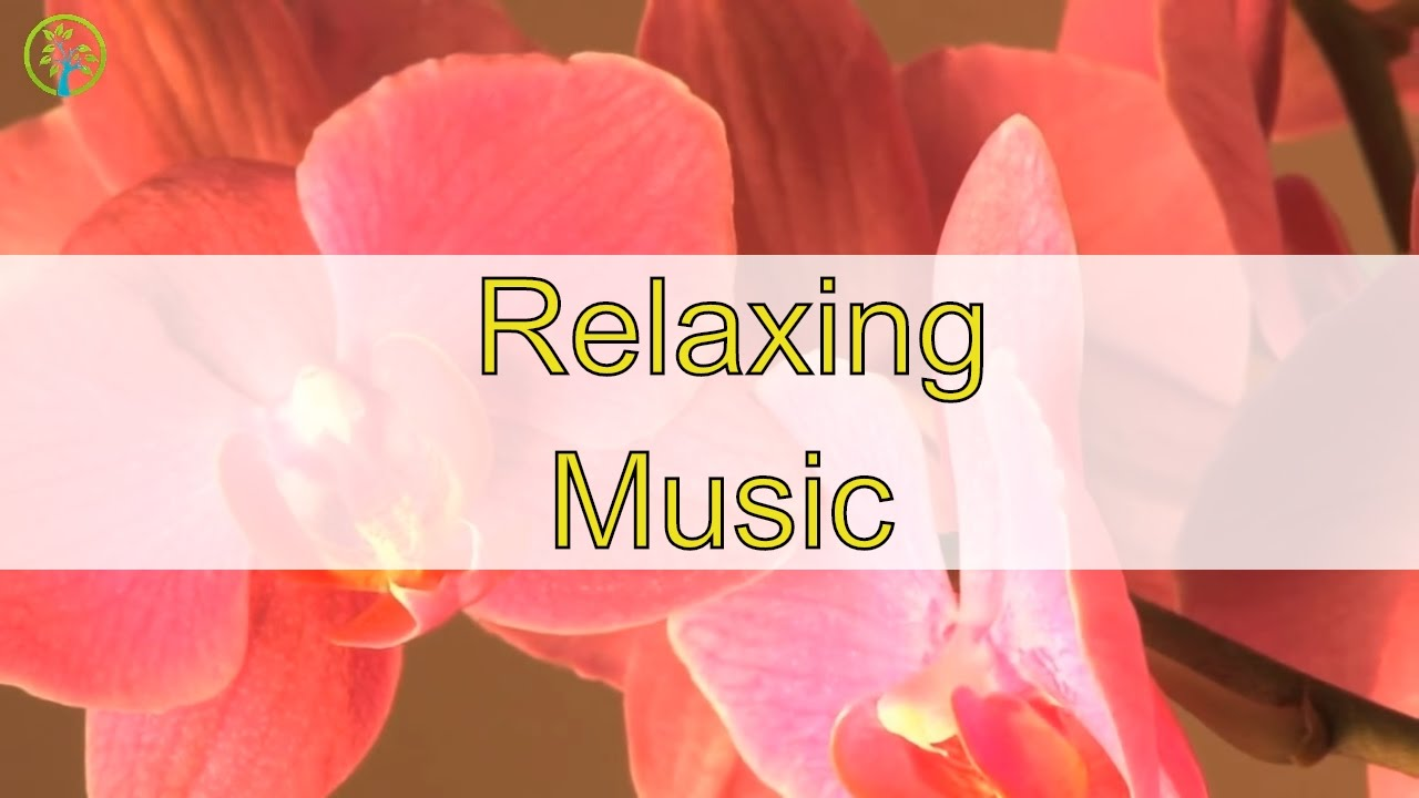 Relaxing Music For Stress Relief and Healing: Relaxation ...  Relaxing Music ...