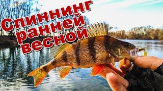 Рыбалка ранней весной | Ловля щуки и окуня на спиннинг | Микроджиг спас рыбалку