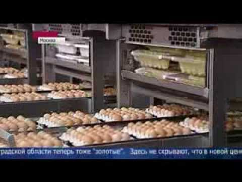 РИА Новости - события в России и мире: темы дня, фото