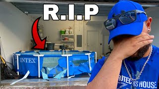 *Eviction Update* Here Is What Really Happened With The Fish Pond...