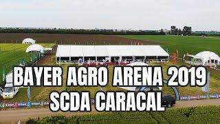 Bayer Agro Arena 2019 - SCDA Caracal (transmisia LIVE)