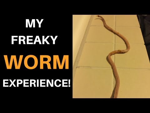 *Why YOU have PARASITES, and my freaky WORM experience!*