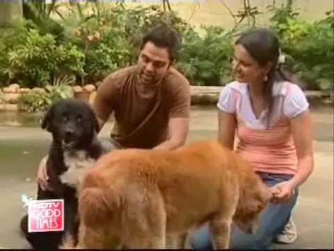 Raja Rani Dog Breed Name