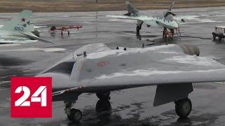 Крылатые охотники. Специальный репортаж – Россия 24