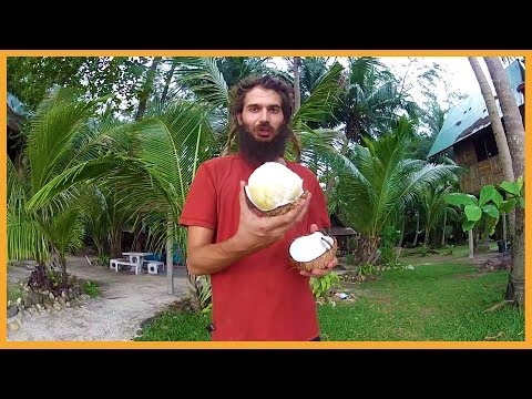 DELICIOUS SPROUTED COCONUT