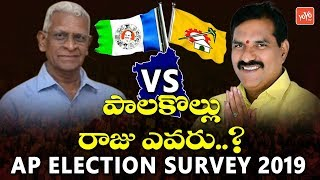Palakollu Election Survey | AP Elections 2019 | Nimmala Ramanaidu VS Babji | YOYO TV Channel