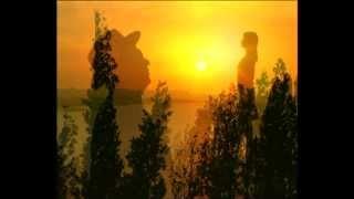 Elxan �irinov - Strangers In The Night