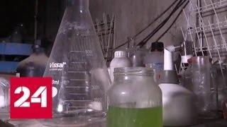 Бельгия незаконно поставляла в Сирию вещество для производства зарина - Россия 24