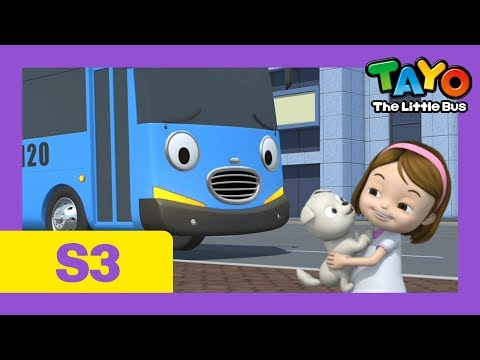 Tayo I want a puppy l Tayo S3 EP19 l Tayo the Little Bus