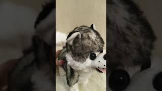 Собачка на поводке интерактивная игрушка Хаски