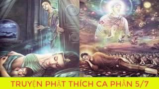Bạn Có Duyên Với Đức Phật Nghe Kể Chuyện Đêm Khuya Phật Thích Ca Mau Ni Truyện Phật giáoP5