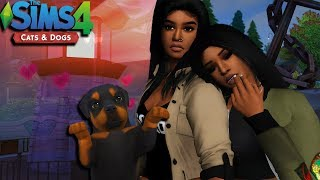 THE SIMS 4 CATSDOGS EPISODE 3 LIGHTHOUSE WOOHOO