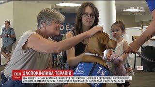 В аеропорту Арканзаса пасажирів, які бояться літати, підбадьорюють спеціально навчені собаки