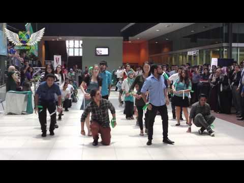 APU Pakistan Students Community Flashmob 2013