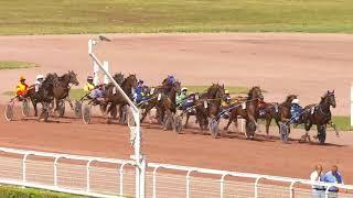 Vidéo de la course PMU PRIX DE JONQUIERES