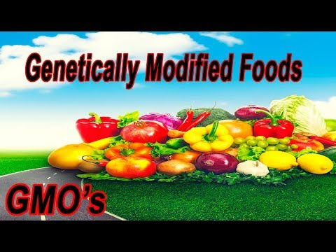 What's The Big Deal About GMO's, Are They Really That Important A Subject?