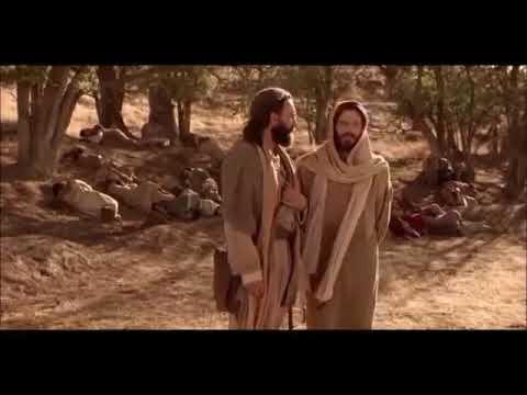 Download Les paroles de Jésus, la mort, la résurrection, la vie éternelle.