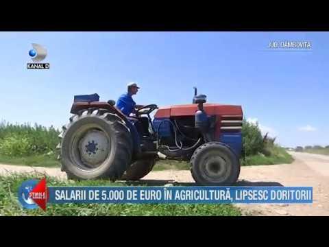 Stirile Kanal D - Salarii de 5000 de euro in agricultura, lipsesc doritorii! Editie COMPLETA