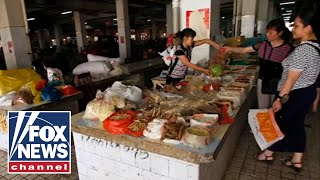 'Wet markets' reopening across China: Report