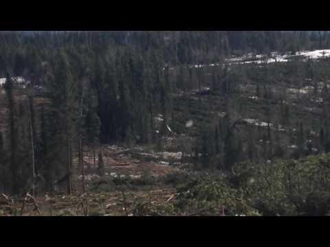 Logging Block = South of Grande Prairie AB - Processing