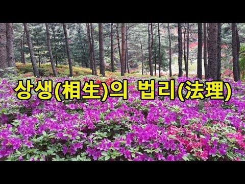 대순진리회 - 상생의 법리 (해원상생 보은상생)