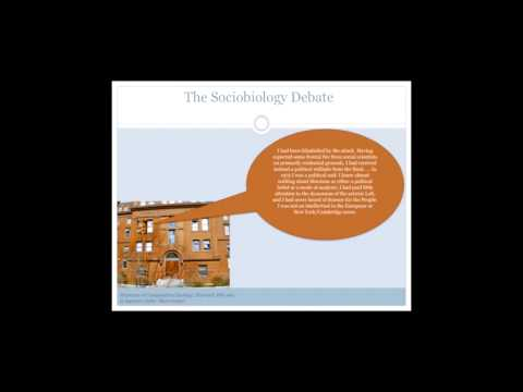 Sociobiology - A Theory of Everything