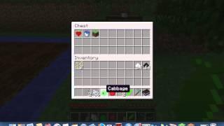 Minecraft Mod Showcase More food Mod!!!