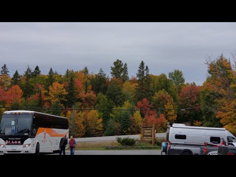 BEST FALL COLORS IN CANADA (ALGONQUIN PARK) 4K