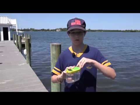 Education Spotlight-Lamarque Elementary School-Field Trip to Bay Preserve
