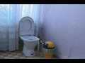 Татарстан. Директор школы установил скрытую камеру в женском туалете