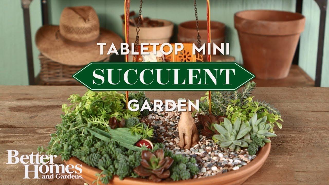Tabletop Mini Succulent Garden Youtube