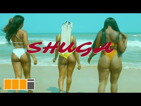 s3fa---shuga-ft.-dope-nation-(official-video)