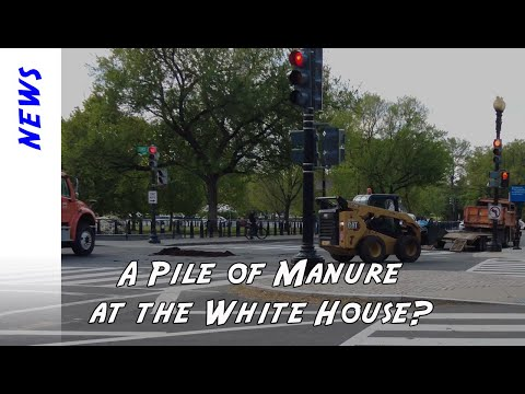 It was a calm morning at the White House, except for the big pile of manure in the road.