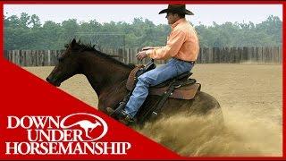 Clinton Anderson Riding Diez Bridleless
