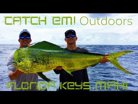 Florida Keys Dolphin Fishing Offshore Fishing Mahi Mahi Tuna HD