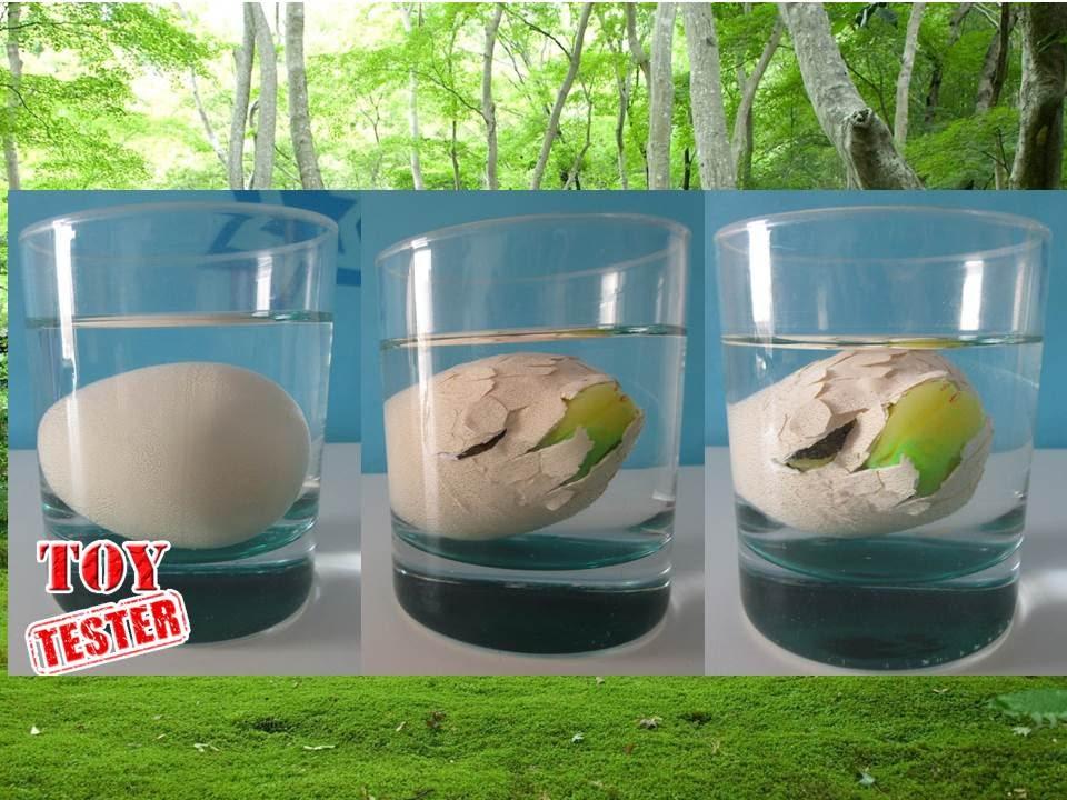 Nacimiento de dinosaurio de juguete | Huevo dinosaurio de juguete ...