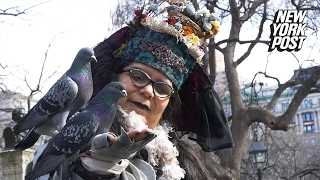 """A New York gem: this woman is """"mother"""" to hundreds of pigeons"""