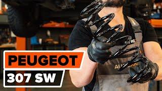 Wie PEUGEOT 307 SW (3H) Fahrwerksfedern austauschen - Video-Tutorial