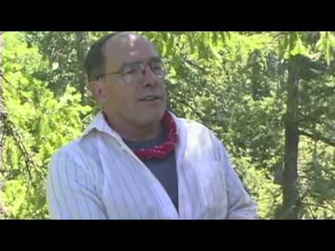 Jim Sedell HJA Canopy