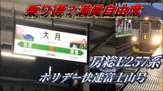 Download Video (満員電車)E257系ホリデー快速富士山号に乗車大月〜八王子(高尾) MP3 3GP MP4