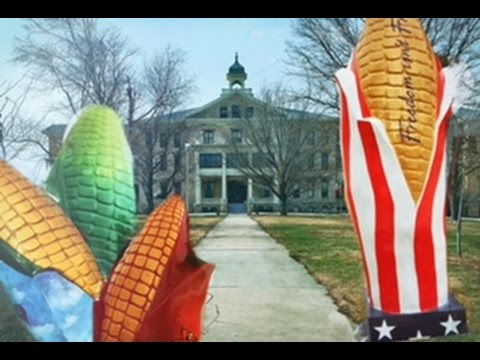 AmeriCorps Vlog: Week #1