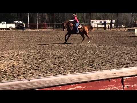 Dancer arena race 2/8/14