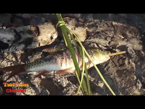 Hmong @ Laos Fishing & Outdoor Cooking 2018 Part 2 End