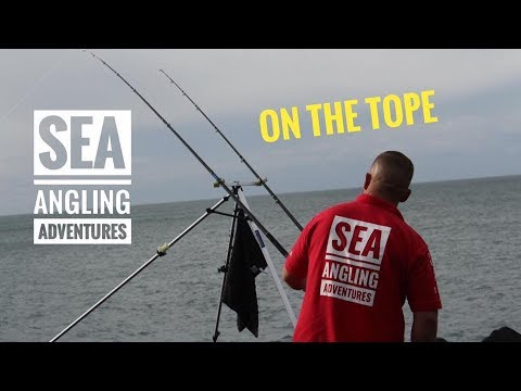ON THE TOPE WITH SEA ANGLING ADVENTURES