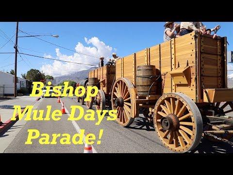 Borax Wagons | 50th Anniversary of Bishop Mule Days! | Engels Coach