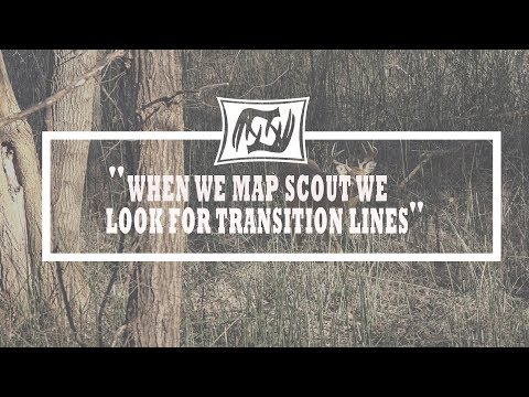 Hunting Whitetails Using Habitat Transition Lines: Scouting Quick Tip